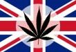 marijuana-news-today-june-19-300x173.jpg