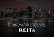 REIT-Dividend-Aristocrats.png