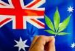 Marijuana-Legalization-Gains-Steam-in-Australia-Great-News-for-Pot-Stocks-300x225.jpg
