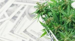 fresh-marijuana-flower-on-hundred-dollar-banknote-U3NDWL2-300x200.jpg
