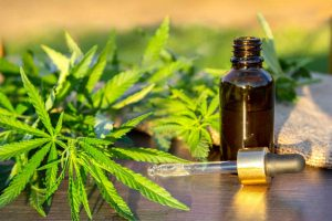 green-branch-cannabis-with-five-fingers-leaves-and-pipette-dropper-with-drop-near-glass-bottle-with_t20_98VQyB-1-300x200.jpg