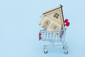 shopping-pushcart-trolly-cart-pushcart-basket-banking-mortgage-business-property-loan-concept-buy_t20_nRoOrR-300x200.jpg