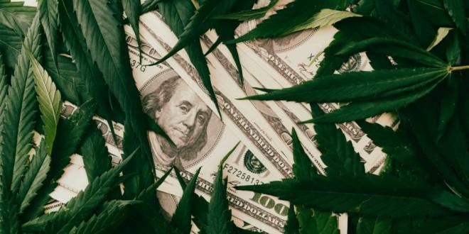 the-cannabis-plant-on-us-dollars-money-with-mariju-DNYKW67-1024x683.jpg